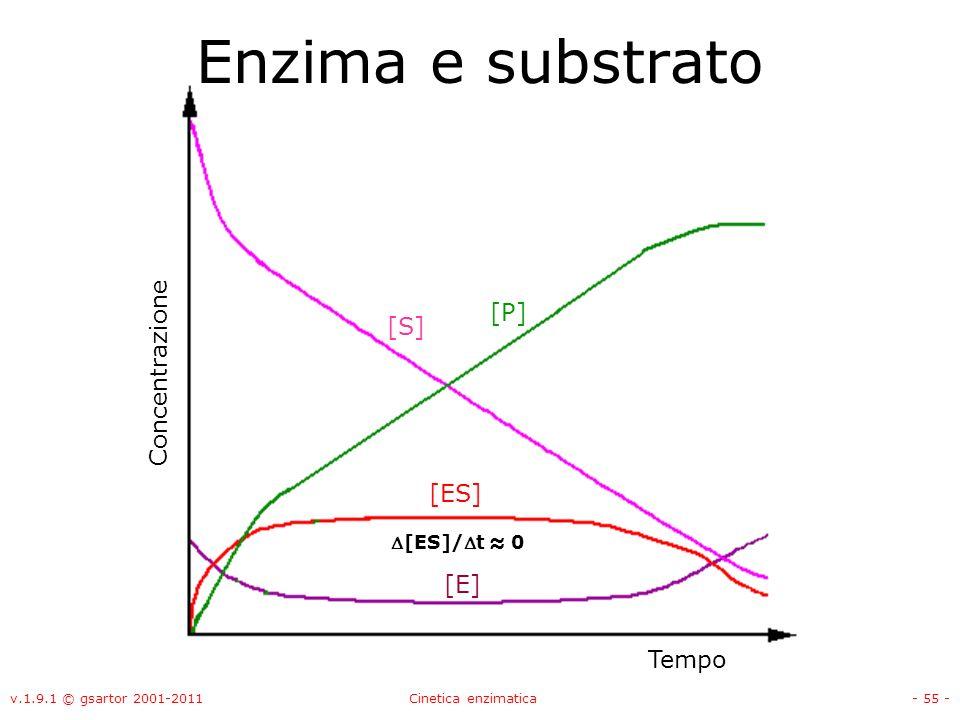 Enzima e substrato [P] [S] Concentrazione [ES] [E] Tempo D[ES]/Dt ≈ 0